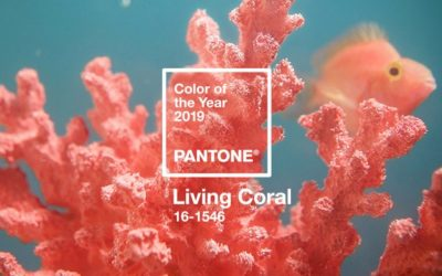 Pantone Announces the Color of the Year for 2019
